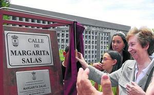 El callejero de Valladolid es masculino