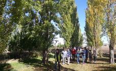 Los vecinos de Fuenterrebollo reforestan la dehesa con serbales