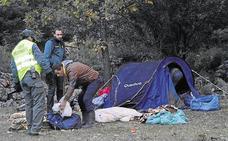 Así actúan las bandas de recolectores ilegales de setas en Palencia