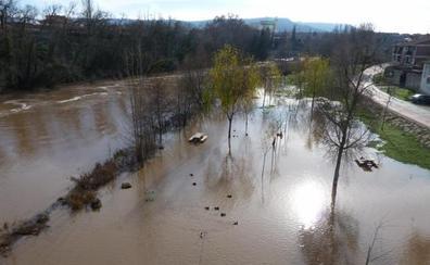 Otra crecida del Duero inunda un paseo en Tudela y mantiene anegada la chopera en Valladolid