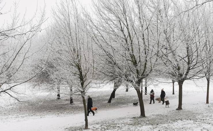 El Parque Ribera de Castilla de Valladolid amanece cubierto de nieve