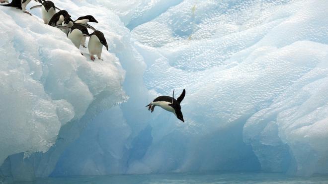 Una expedición científica navegará por primera vez alrededor de la Antártida