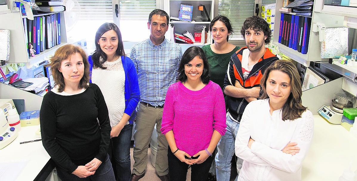 Científicos descubren la implicación de un gen en el desarrollo del linfoma