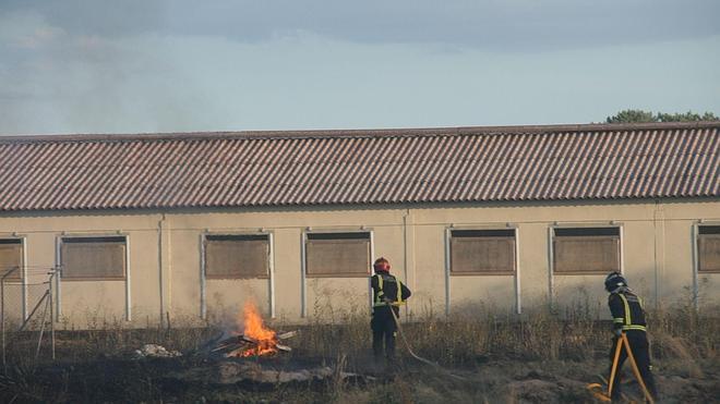 Arden 26 hectáreas de arbolado en el fuego de Pinarejos, que está controlado