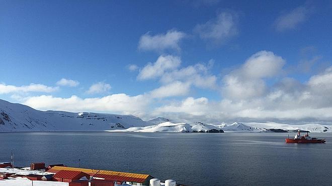 Guijuelo y cochinillo para la Antártida