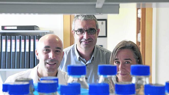 El equipo del doctor Bustelo, del Centro del Cáncer, recibe 1,2 millones de la AECC