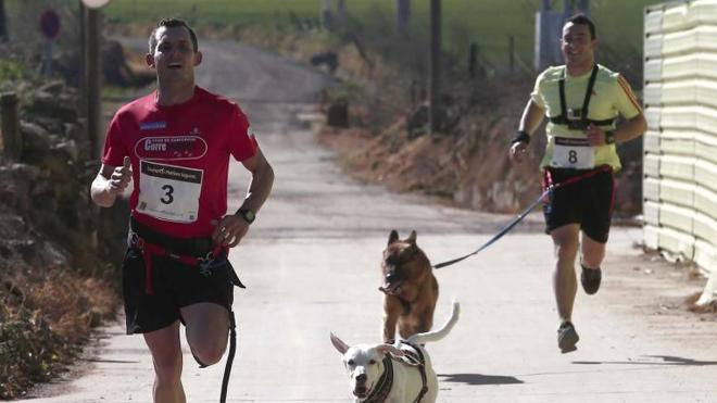 Valladolid acogerá el primer circuito de carreras de deportistas acompañados por perros