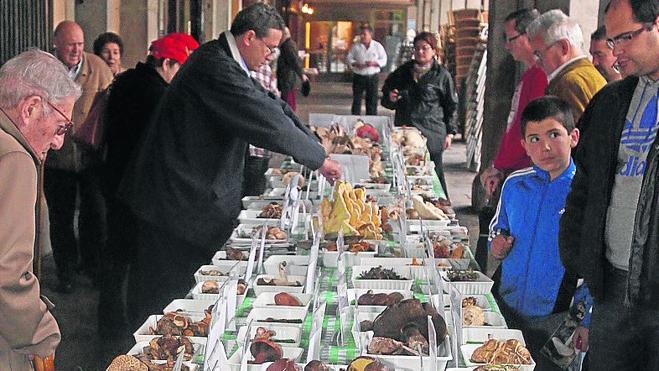 Peligra la tradicional exposición de setas que se celebra en el día de San Frutos