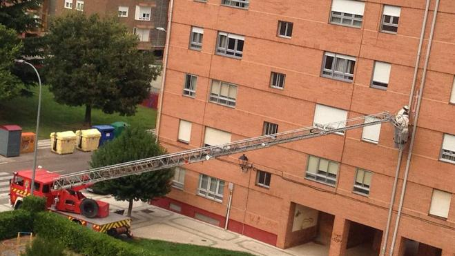 Los bomberos retiran dos avisperos en Palencia