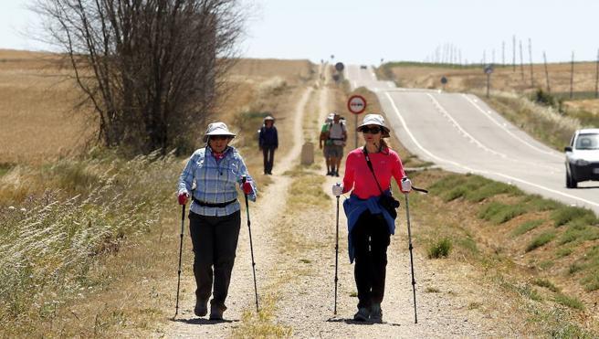 Más de 47.000 peregrinos recorrieron el Camino de Santiago en Palencia
