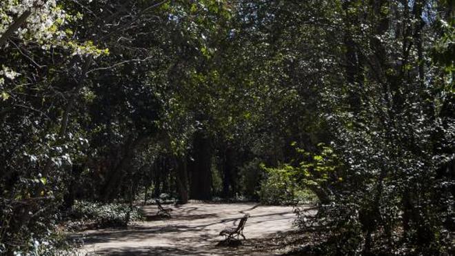 La primavera llega al Campo Grande con otra mirada